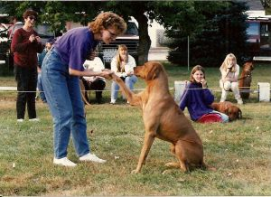 zulu-winning-best-trick-dog